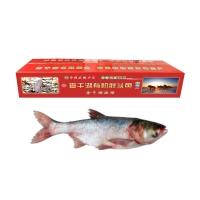 贰号胖鱼头-查干湖1998型